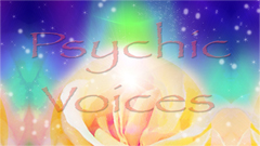Psychic Voices on Dedham Television.